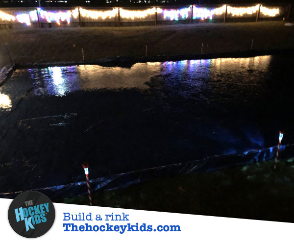 Backyard ice rink at night